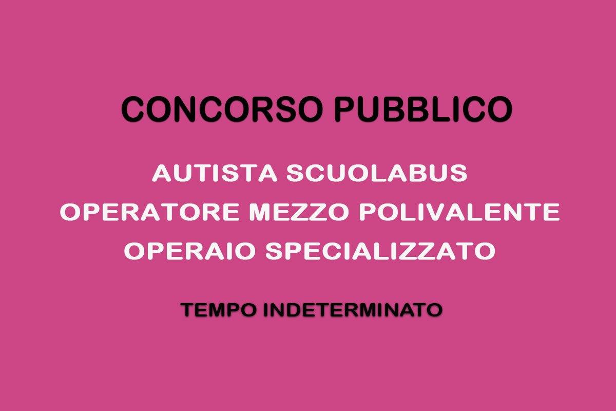 Lavoro e concorsi pubblici per autista workisjob - Porta portese offerte lavoro autista ...